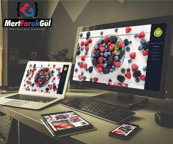 Mert Faruk Gül | Freshplus.com.tr İnternet Sitesi Yapımı